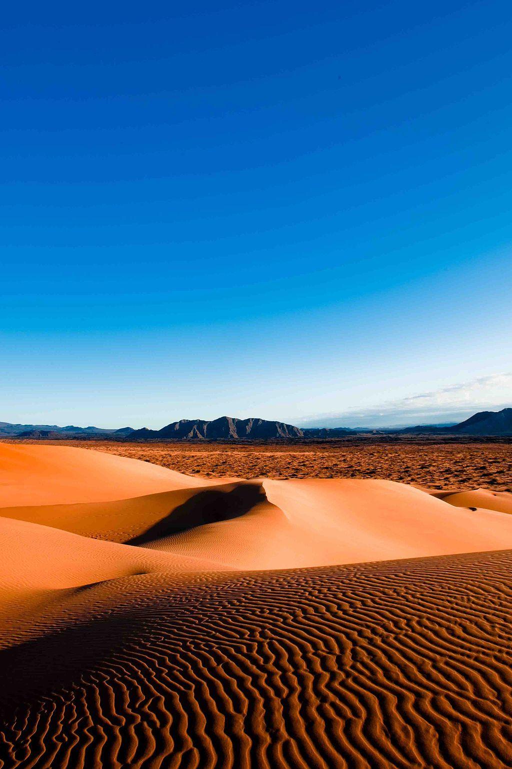 View of Desert Terrain