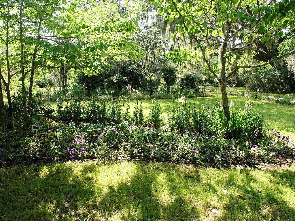 View of Magnolia Plantation and Gardens