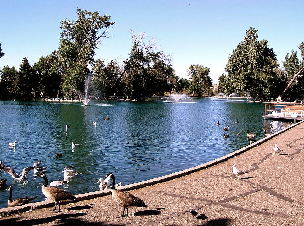 Duck Pond in Gibson Park