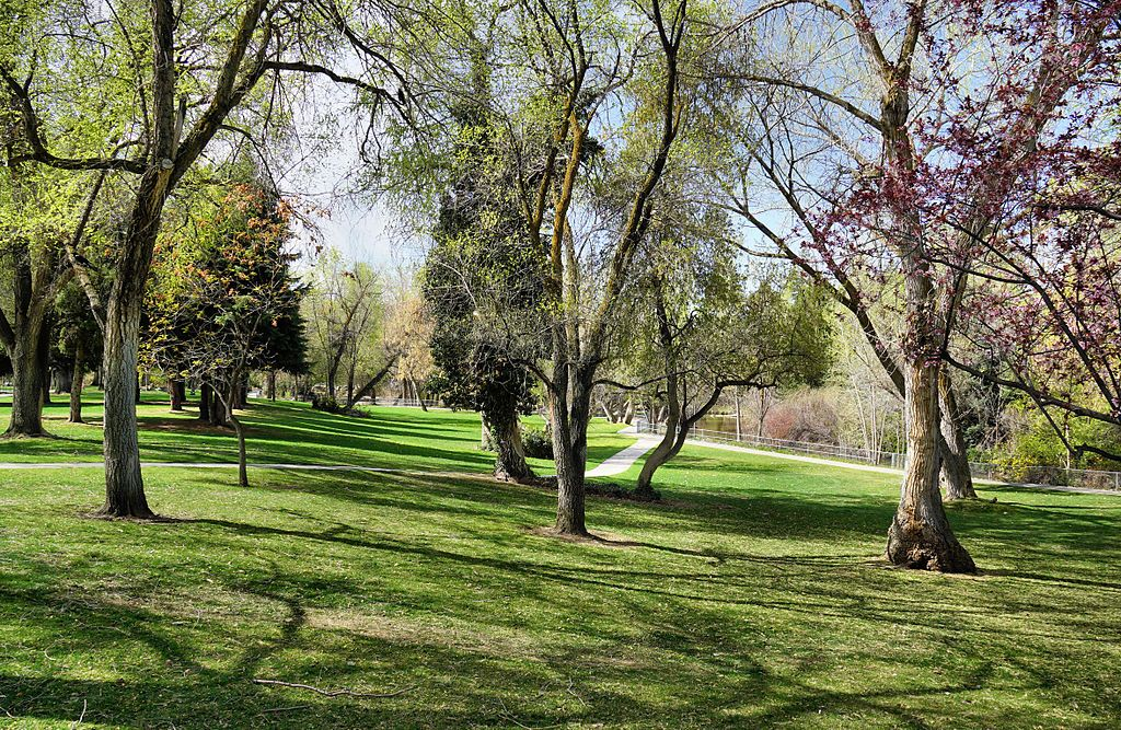 Beautiful View of Layton Commons Park