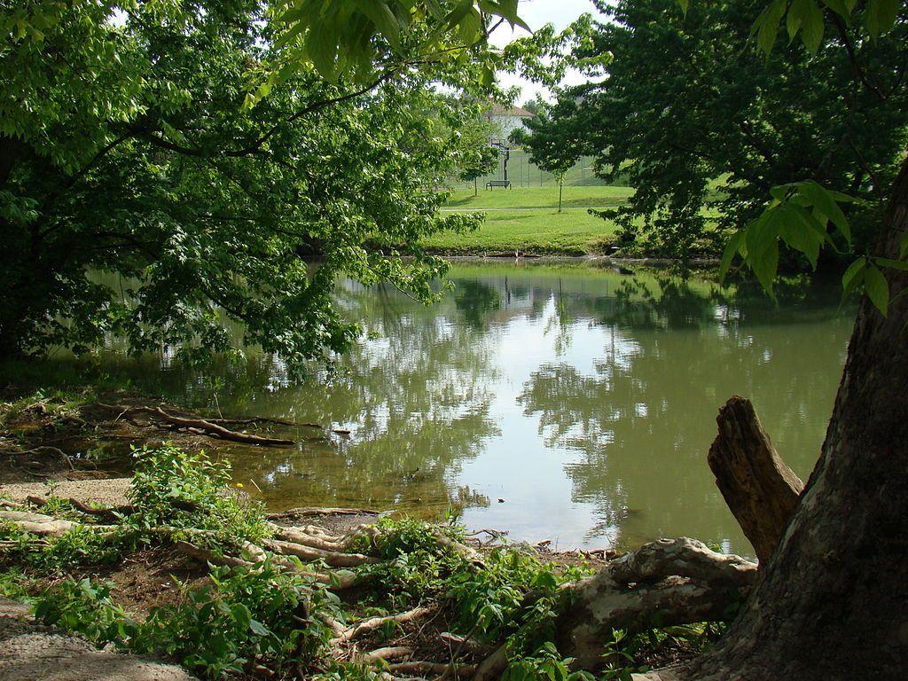 North Fork of Elkhorn Creek