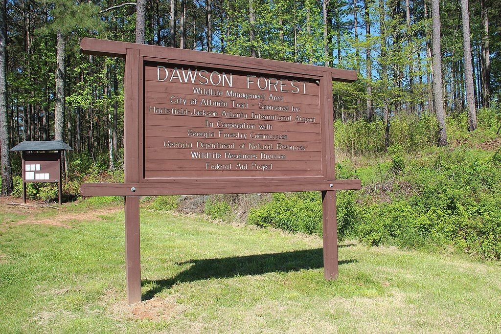 A Sign in Dawson Forest