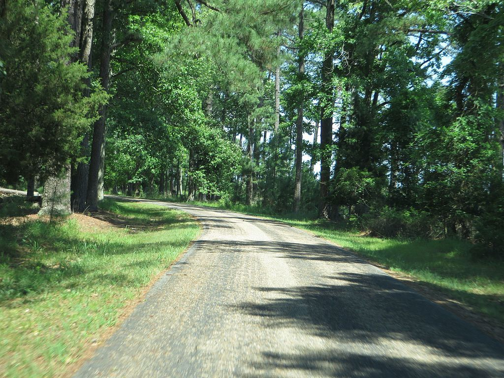 Jamestown Island Drive