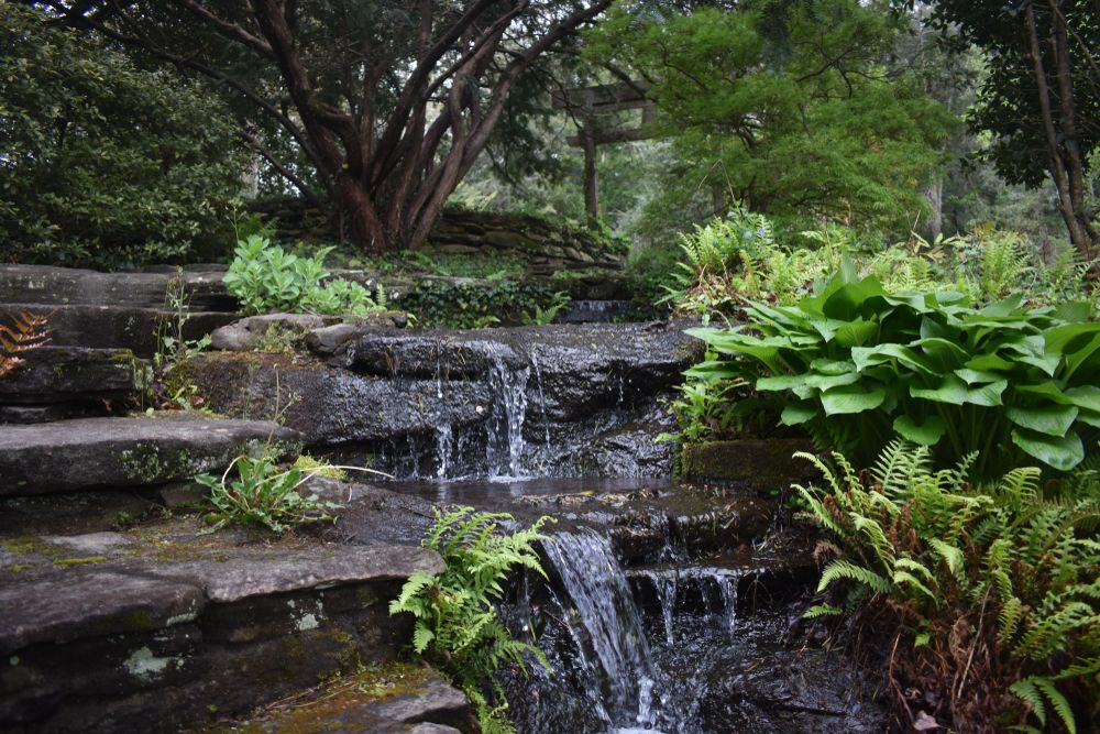 View of Dunaway Gardens