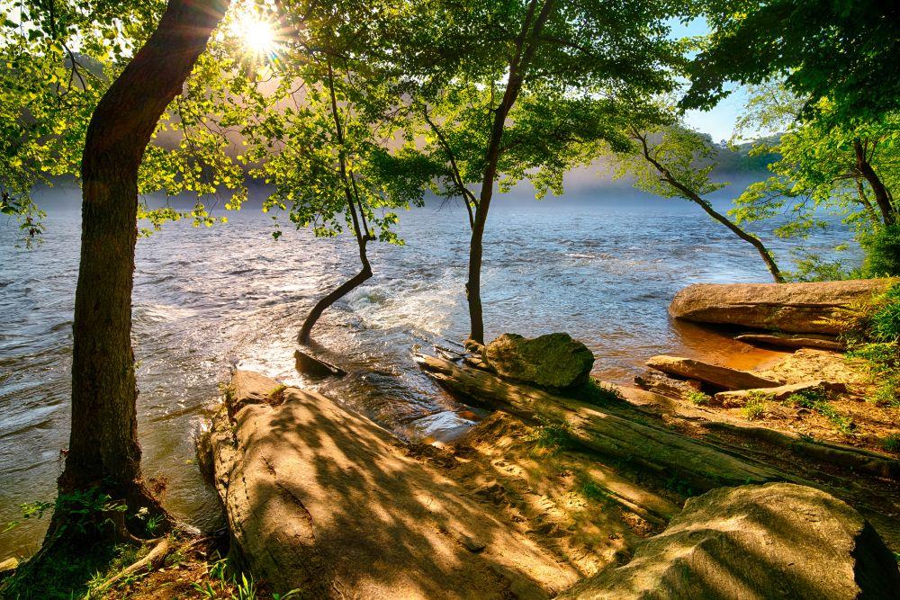 View of Chattahoochee River