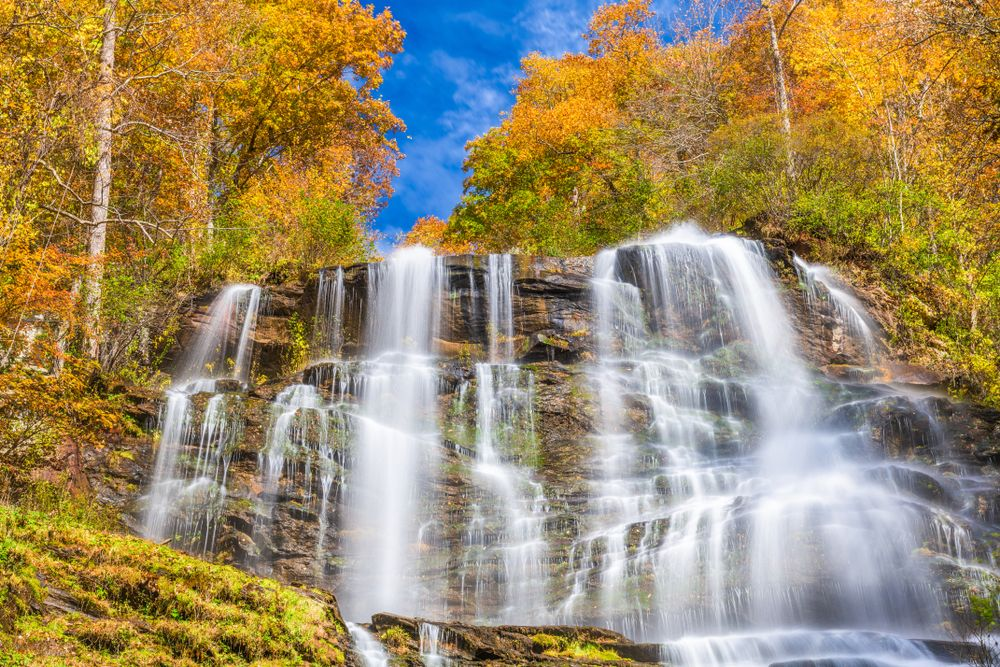 Scenic View of Amicalola Falls State Park