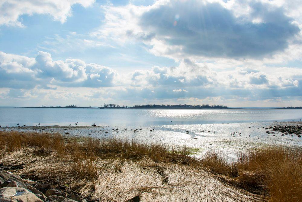 View of Calf Pasture Beach
