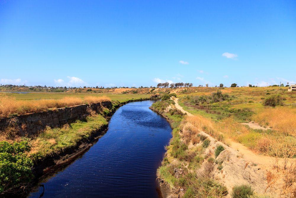View of Upper Newport Bay Nature Preserve