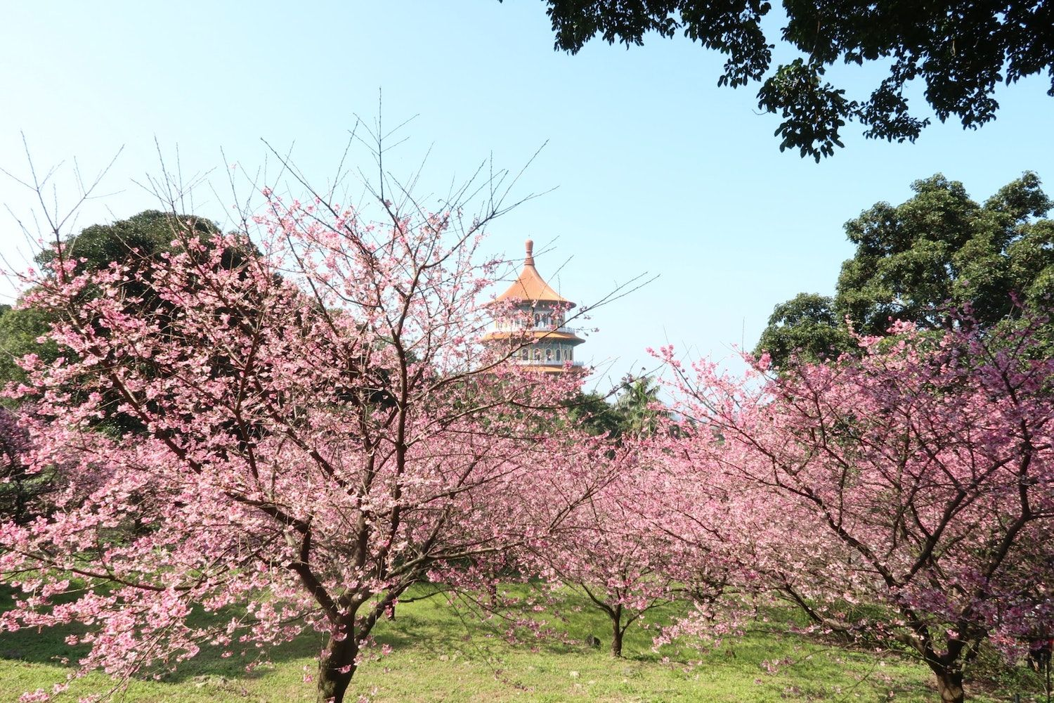 10 Best Things to Do in Tamsui