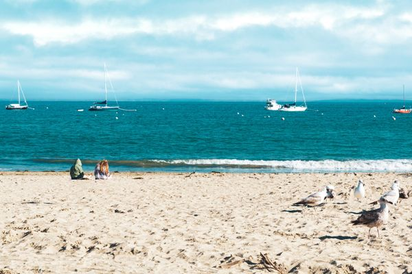 15 Best Things to Do in Capitola