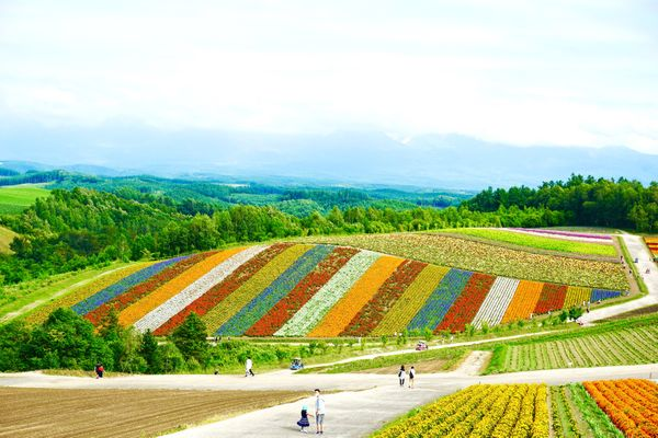 20 Best Things to Do in Hokkaido