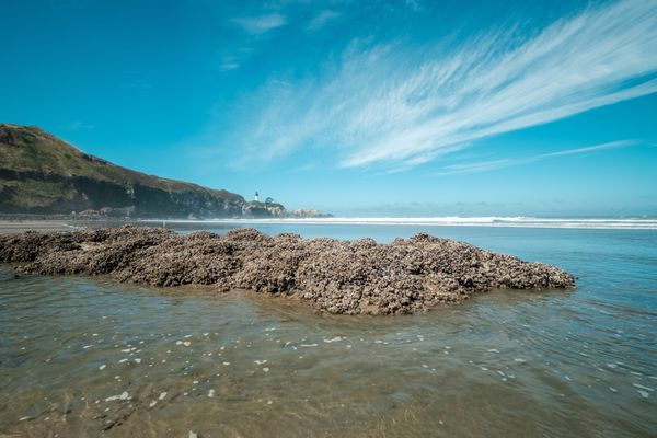 15 Best Things to Do in Newport, Oregon