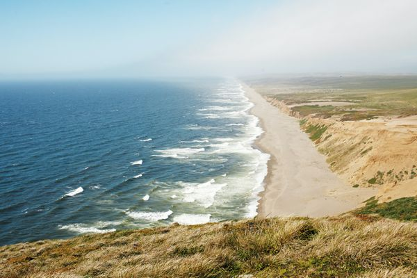 15 Best Things to Do in Bodega Bay