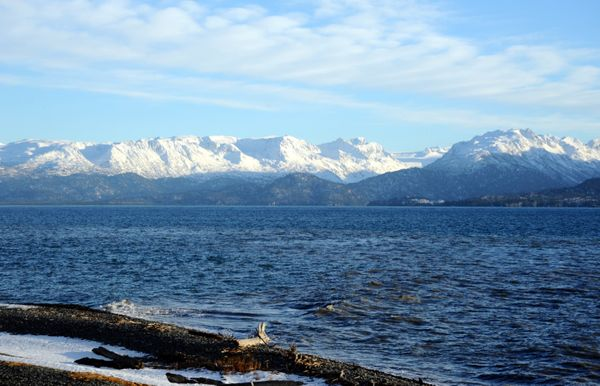 15 Best Things to Do in Homer, Alaska
