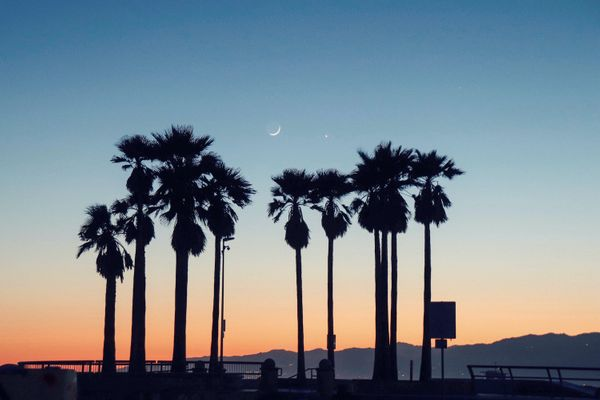 15 Best Things to Do in Venice Beach